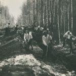 строительство шоссе УЗТМ, пр. Космонавтов