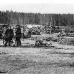 вырубка леса под завод